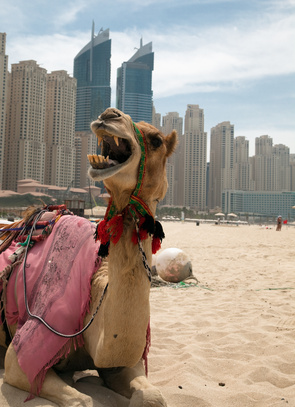 Dubai; Foto: © Cherkas - Fotolia.com