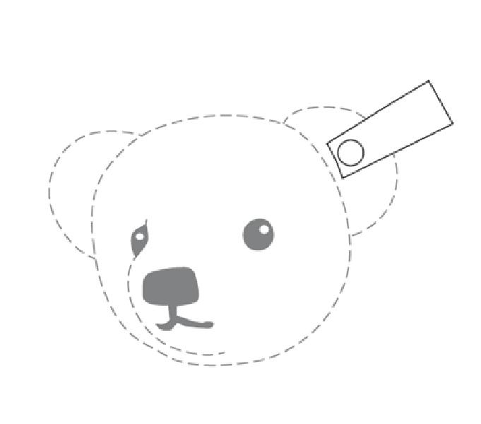Steiff-Teddybär; Quelle: HABM-Anmeldung 009439654 vom 12.10.2010